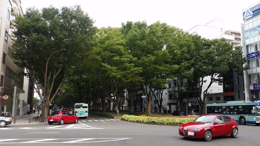 The Famous Jozenji Dori in Sendai