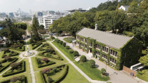 Yonsei Campus Summer